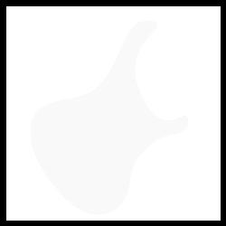 Blasius Bali body shape
